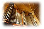 orgue-w.png